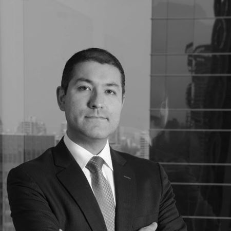 Our Lawyers - Javier Moya