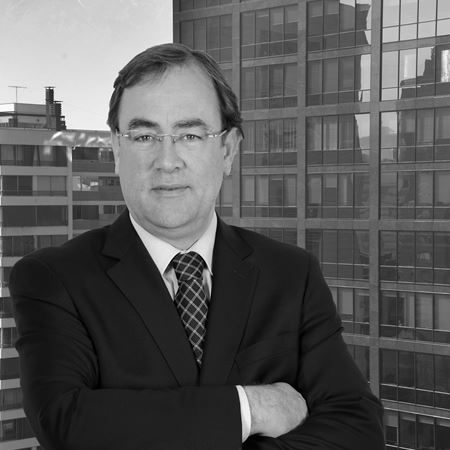 Our Lawyers - Edmundo Agramunt Orrego